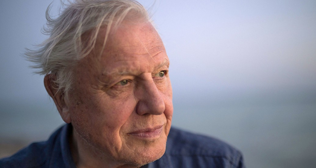 David Attenborough : The Voice of Nature